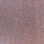 "Artist: Joseph Jura Tjapaltjarri Title: ""Tali"" Materials: Acrylic On Linen Size: 91cm x 60cm Painted: During 2002 Cat No: M0137"